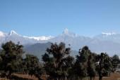 Mardi Himal Trek.jpg