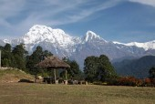 South Annapurna and Himchuli from Australian Camp.jpg