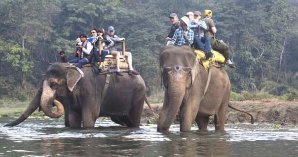 Chitwan National Park and Elephant Safari