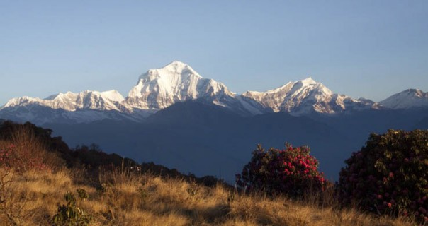 Annapurna Panorama and Chitwan National