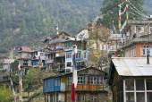 Thulo Syabru village.jpg