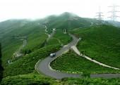 tea_garden_on_the_hill.jpg