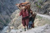 Women carrying fire wood JPG.JPG